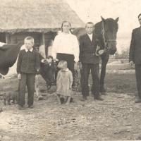 Arklys brangiausias valstiečio turtas