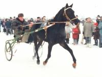 Sartų žirgų lenktynės Dusetose. 1996 m. vasario 3 d. Fotografas Vladimiras Gulevičius